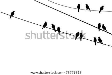 vector birds on wire - stock vector