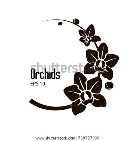 Vector black white flowers orchid on stock vektr 738757909 vector black and white flowers of orchid on the round branch mightylinksfo