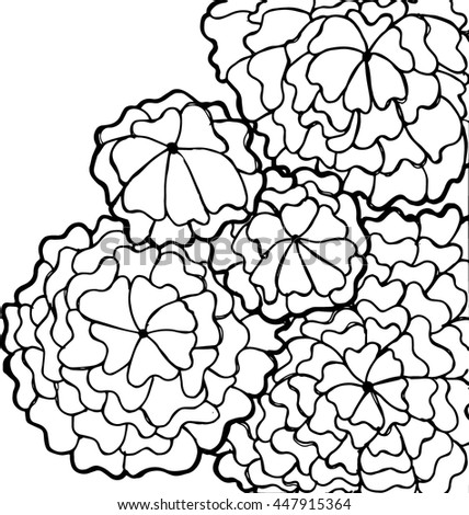 vector black and white flowers vector coloring book page for adult doodle floral pattern