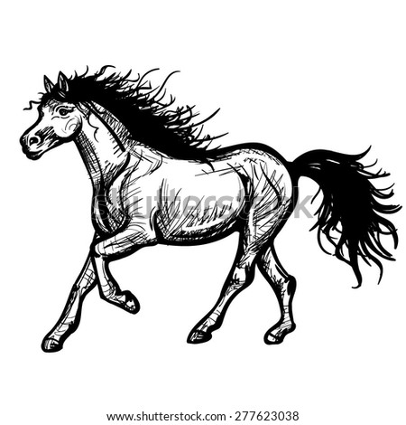 Vector Black and White Hand Drawn Running Horse Illustration