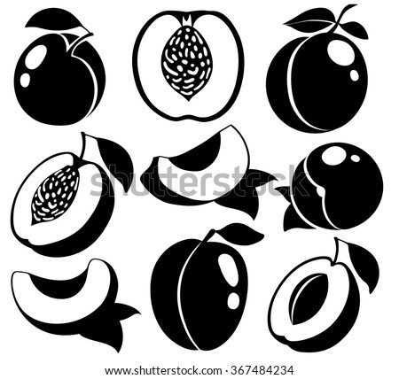 Vector black and white peaches. Silhouettes of peaches and apricots isolated on white background, collection of vector illustrations - stock vector