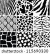 vector black and white skin of different animals - stock vector