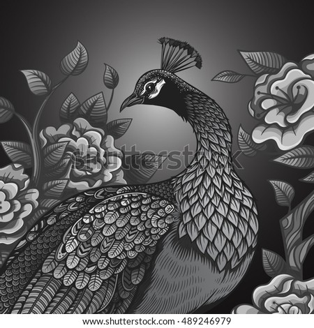 Vector Black And White Vintage Peacock Illustration