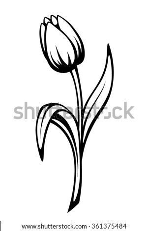 Vector black contour of a tulip flower isolated on a white background. - stock vector