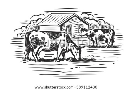 vector black cow and farm on white background - stock vector