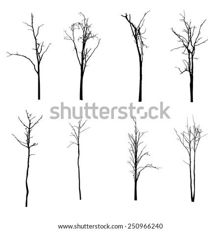 vector black silhouette of a bare tree - stock vector