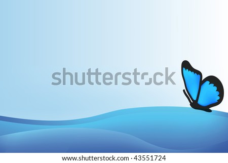vector blue butterfly isolated on white  background