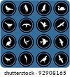 vector blue  signs. silhouettes of birds. birrds icons - stock vector