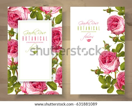 garden banners. Vector Botanical Vertical Banners With Garden Rose Flowers On White Background. Floral Design For Natural