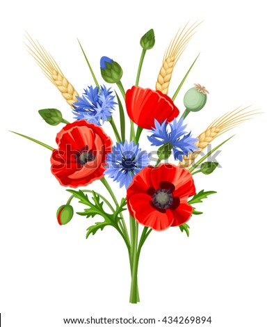 Vector bouquet of red poppy flowers, blue cornflowers and ears of wheat isolated on a white background.