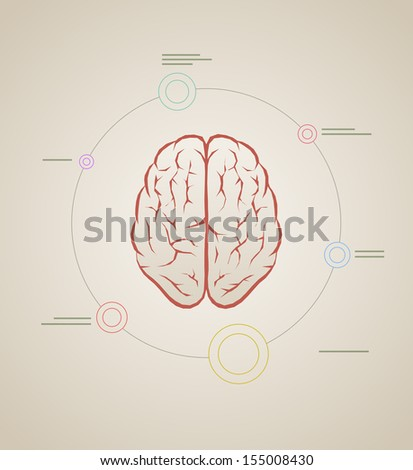 Vector brain inforaphic template. Elements are layered separately in vector file.  - stock vector