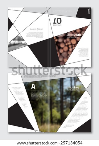 Vector brochure design template. Business background layout with geometric elements for magazine, cover design. A4 size. - stock vector