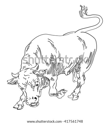 Vector bull agressive - stock vector