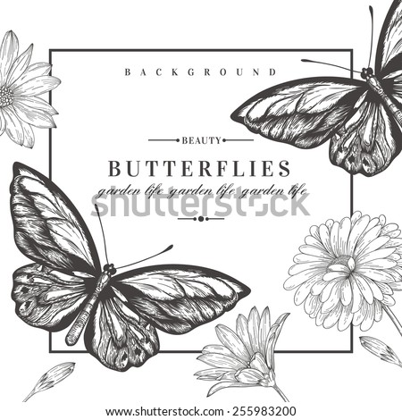Vector card with butterflies and flowers. Black and white illustration. - stock vector