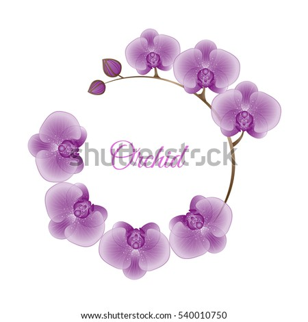 Vector card with decorative flowers of orchids. Can be used for wedding, baby shower, mothers day, valentines day, birthday cards, invitations, greetings.