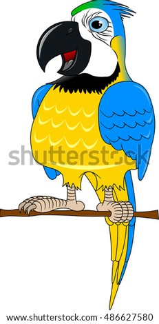 Vector cartoon african Macaw birds made in flat style