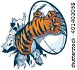 Vector cartoon clip art illustration of a tiger mascot paw ripping out of the background gripping a rugby ball and tearing it with its claws. - stock photo