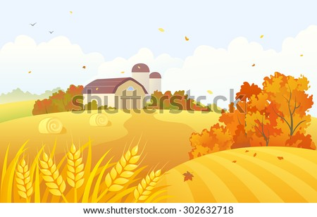 Vector cartoon illustration of a beautiful fall farm scene with wheat fields and barns - stock vector