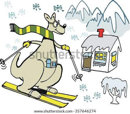 Vector cartoon of kangaroo wearing scarf, skiing on mountain slope.  - stock vector