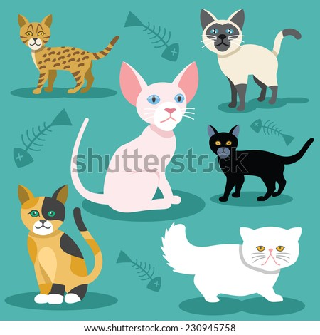 Vector cats flat icons Set. Cheshire, egypt, leopard, black, persian, scottish, siamese cat. Colorful illustration. Retro vintage stylish concept. Background with fish bones print. - stock vector