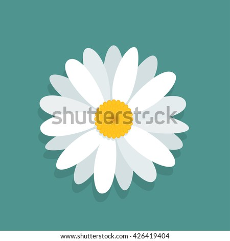 Vector chamomile flower isolated on blue background  - stock vector