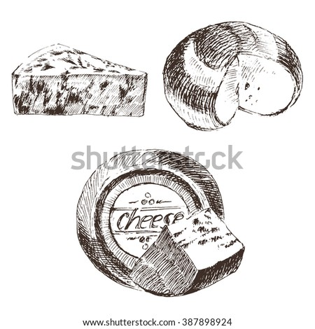 vector cheese sketch drawing, gouda, blue, edammer, maasdam, brie, mozzarella, parmesan, roquefort, camembert