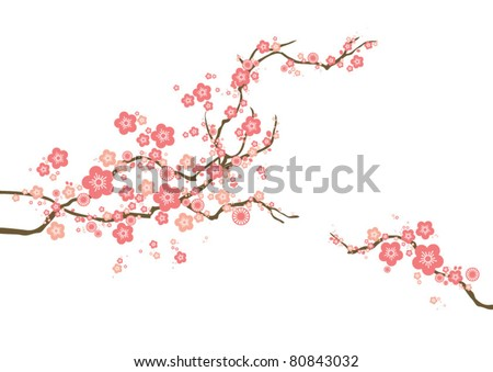 vector cherry blossom - stock vector