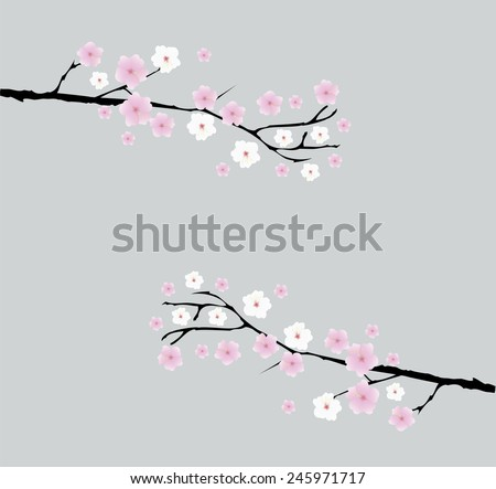 vector cherry blossom branches with space for text