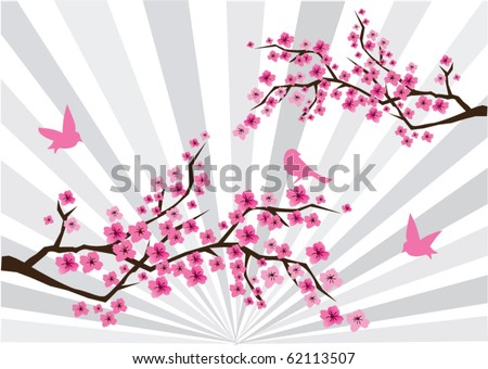 vector cherry blossom with sunburst - stock vector