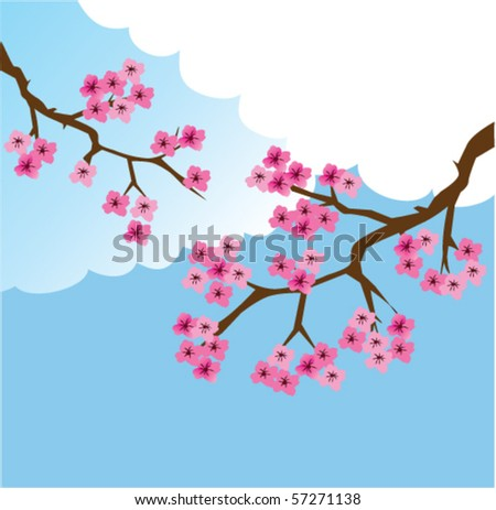 vector cherry branches