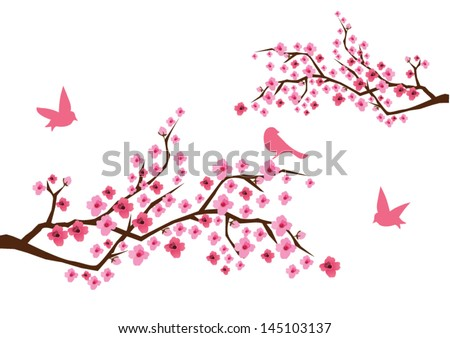vector cherry branches in blossom with birds