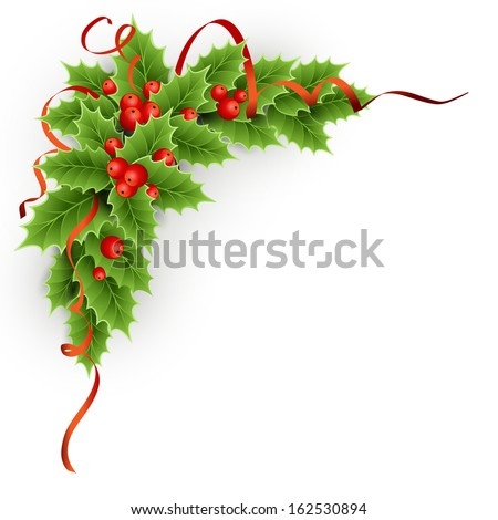 Vector Christmas holly with berries.  - stock vector