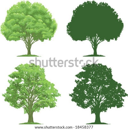 vector clip art of an ecologicaly green, strong trees. Silhouettes are also included. - stock vector
