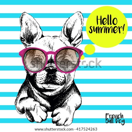 Vector close up portrait of french bulldog wearing the sunglasses. Bright hello summer french bulldog portrait. Hand drawn domestic pet dog illustration. Isolated on background with cerulean stripes.