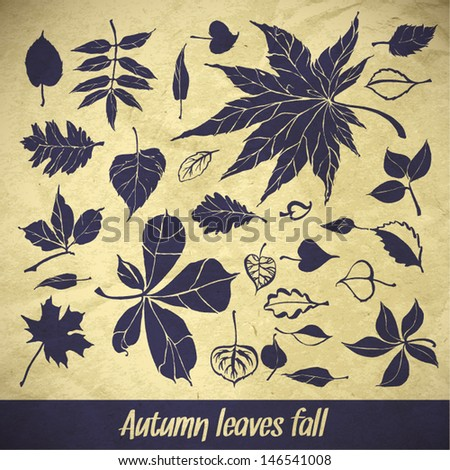 vector collection beautiful brushstroke autumn leaves on paper background - stock vector
