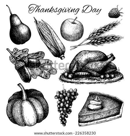 Vector collection of black ink hand drawn thanksgiving day illustration isolated on white. Vintage turkey day sketch set. - stock vector