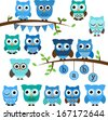 Vector Collection of Boy Baby Shower Themed Owls and Branches - stock vector
