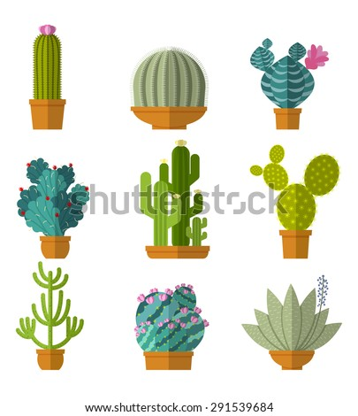 Vector collection of cactus in flat style. Green plant, flower and nature,  floral and exotic, wild botany tropical illustration - stock vector