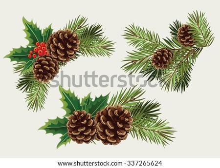 Vector collection of Christmas tree branches with pine cones and mistletoe - stock vector