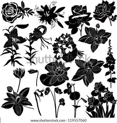 vector collection of flowers isolated on white background - stock vector