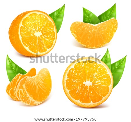 Vector collection of fresh ripe oranges with leaves. - stock vector