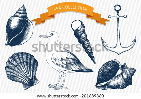 Vector collection of hand drawn sea illustrations. Vintage illustrations with engraving sea elements. - stock vector