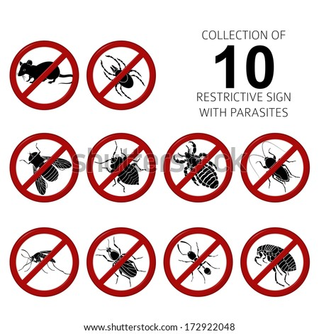 Vector Collection of image of 10 parasites - stock vector
