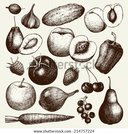 Vector collection of  ink hand drawn vegetables, fruits and berries isolated on vintage background. Healthy food vector illustration. Vintage kitchen illustration. - stock vector
