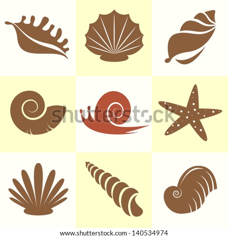 Vector collection of sea shells and snail - stock vector
