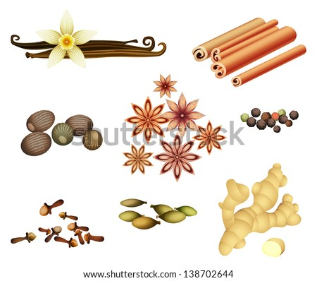 Vector collection of spices  - stock vector