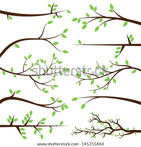 Vector Collection of Stylized Branch Silhouettes - stock vector