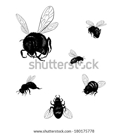Vector collection of various positioned doodle bees - stock vector