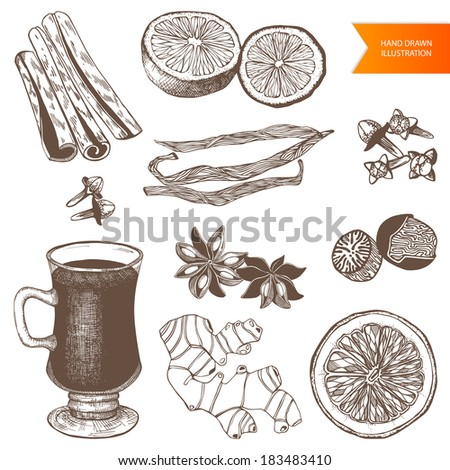 Vector collection of vintage hand drawn mulled wine and spices illustrations isolated on white  - stock vector
