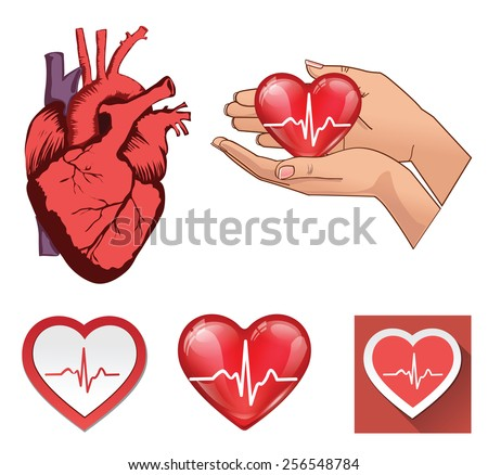 Vector collections of human heart symbols